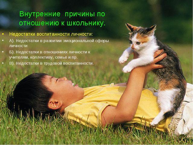 Внутренние причины по отношению к школьнику. Недостатки воспитанности личност...