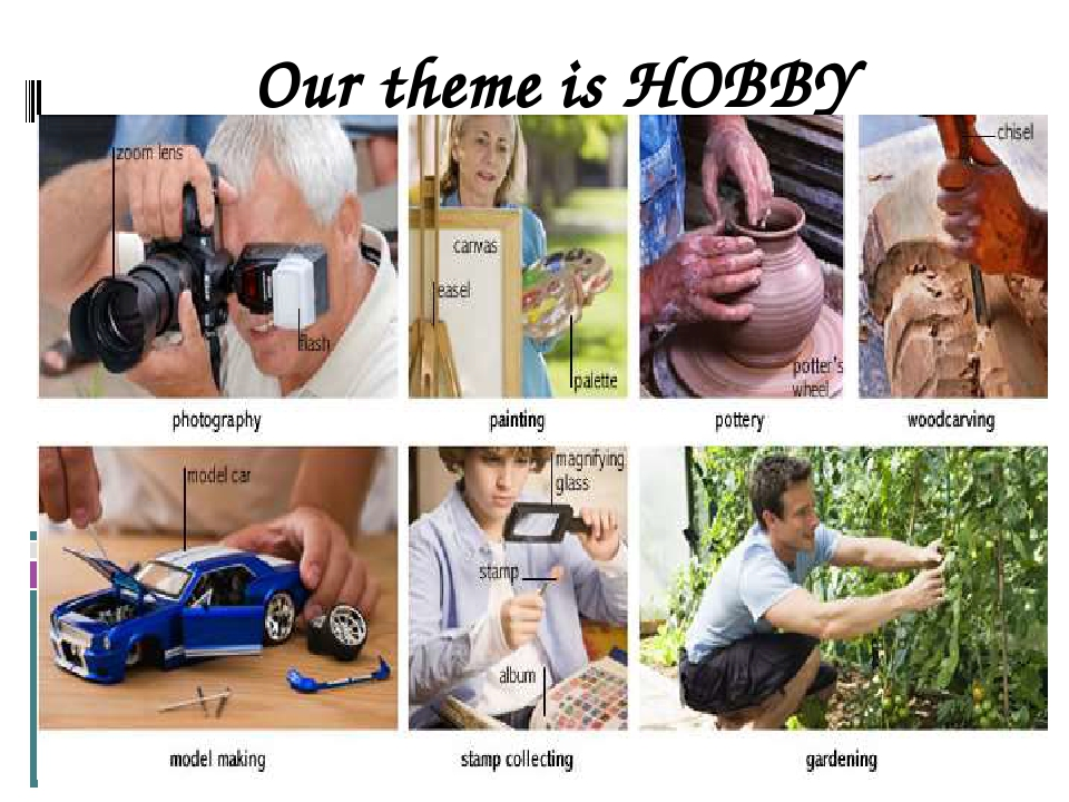 Our theme is HOBBY