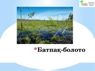 Батпақ-болото