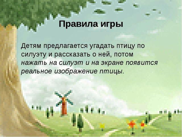 Правила игры Детям предлагается угадать птицу по силуэту и рассказать о ней,...