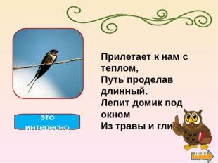 журавль далее это интересно В небе осенью курлычут, За собою в небо кличут. Д