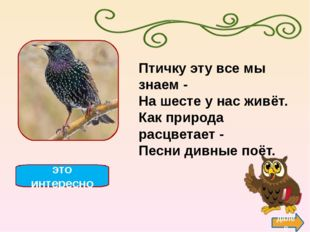 утка далее это интересно Загадка эта непростая: Летела к югу птичек стая, Вож