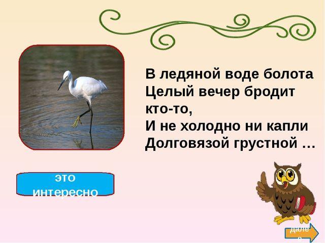 http://stat17.privet.ru/lr/091dd72dd6c5e712807b36eca6b2cdbd- ласточка http://...