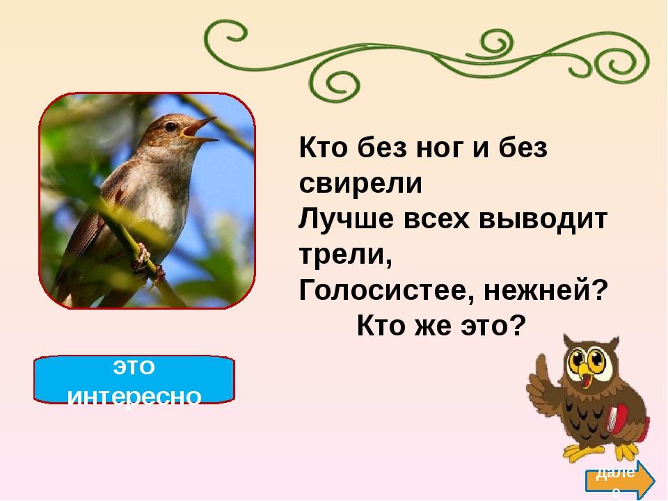 Ласточка — мелкая птица семейства ласточковых, к которому относится до 120 ви...