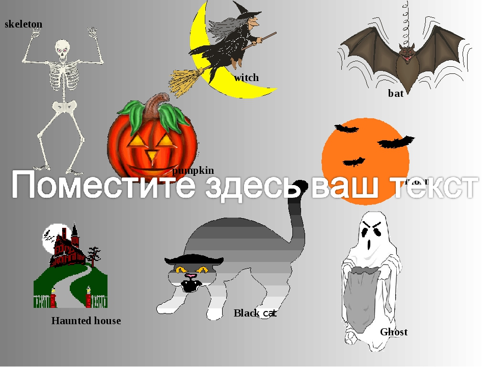 skeleton pumpkin Ghost bat witch Black cat Haunted house moon