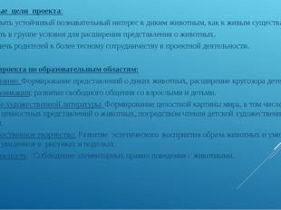 Основные цели проекта: 1.Развивать устойчивый познавательный интерес