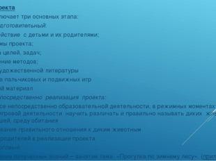 Этапы проекта Проект включает три основных этапа: 1.Подготовительный: -