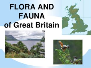 FLORA AND FAUNA of Great Britain