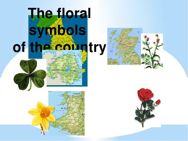 The floral symbols of the country
