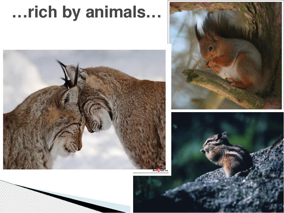 …rich by animals…