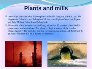 Plants and mills Nowadays there are more than 60 plants and mills along the B