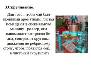3.Скручивание. Для того, чтобы чай был крепкими ароматным, листья помещают в