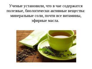 Ученые установили, что в чае содержатся полезные, биологически активные веще