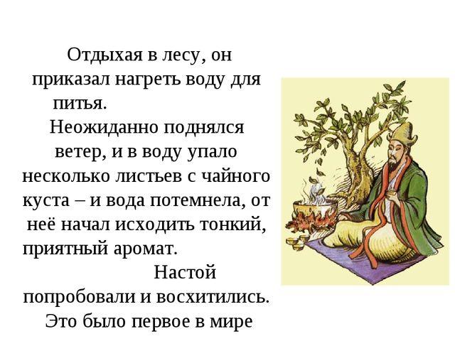 Отдыхая в лесу, он приказал нагреть воду для питья. Неожиданно поднялся вете...