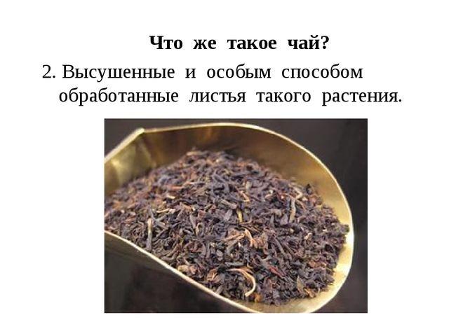 Что же такое чай? 2. Высушенные и особым способом обработанные листья такого...