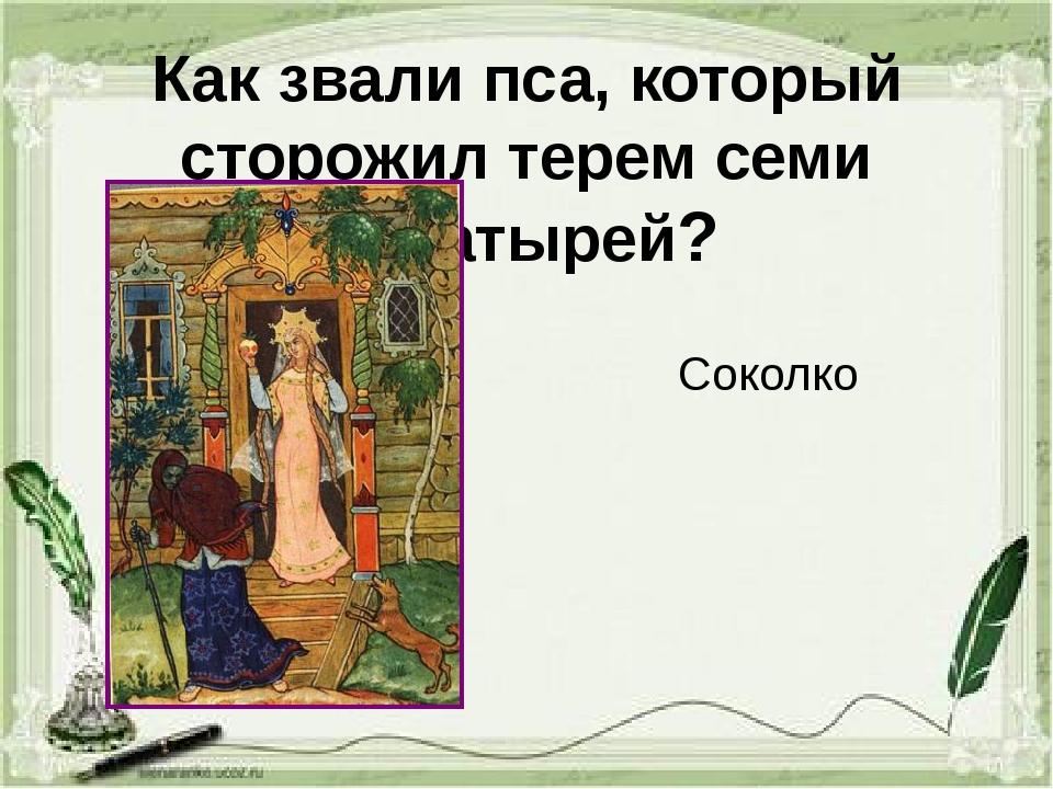Как звали пса, который сторожил терем семи богатырей? Соколко