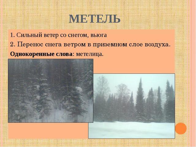 МЕТЕЛЬ 1. Сильный ветер со снегом, вьюга 2. Перенос снега ветром в приземном...