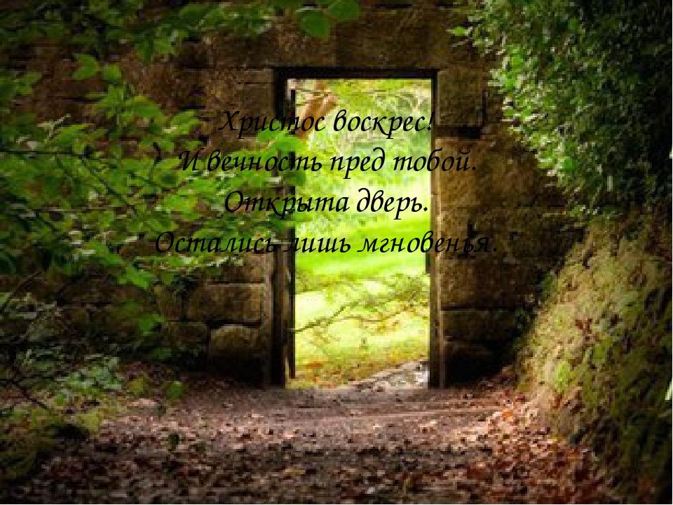 Христос воскрес! И вечность пред тобой. Открыта дверь. Остались лишь мгновен...