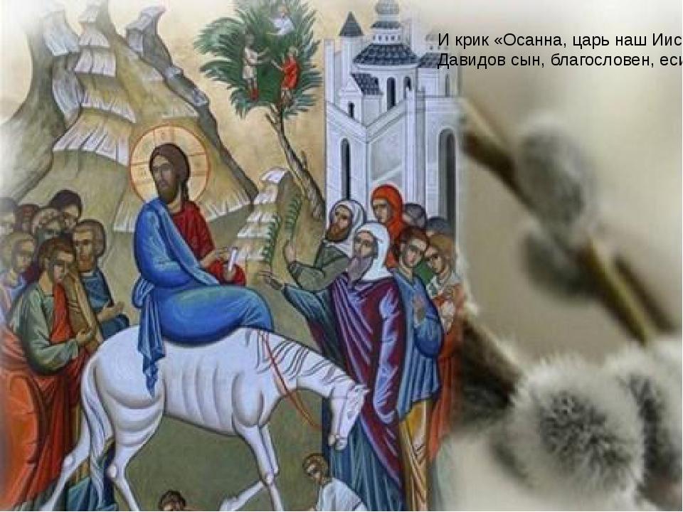И крик «Осанна, царь наш Иисус, Давидов сын, благословен, еси!»