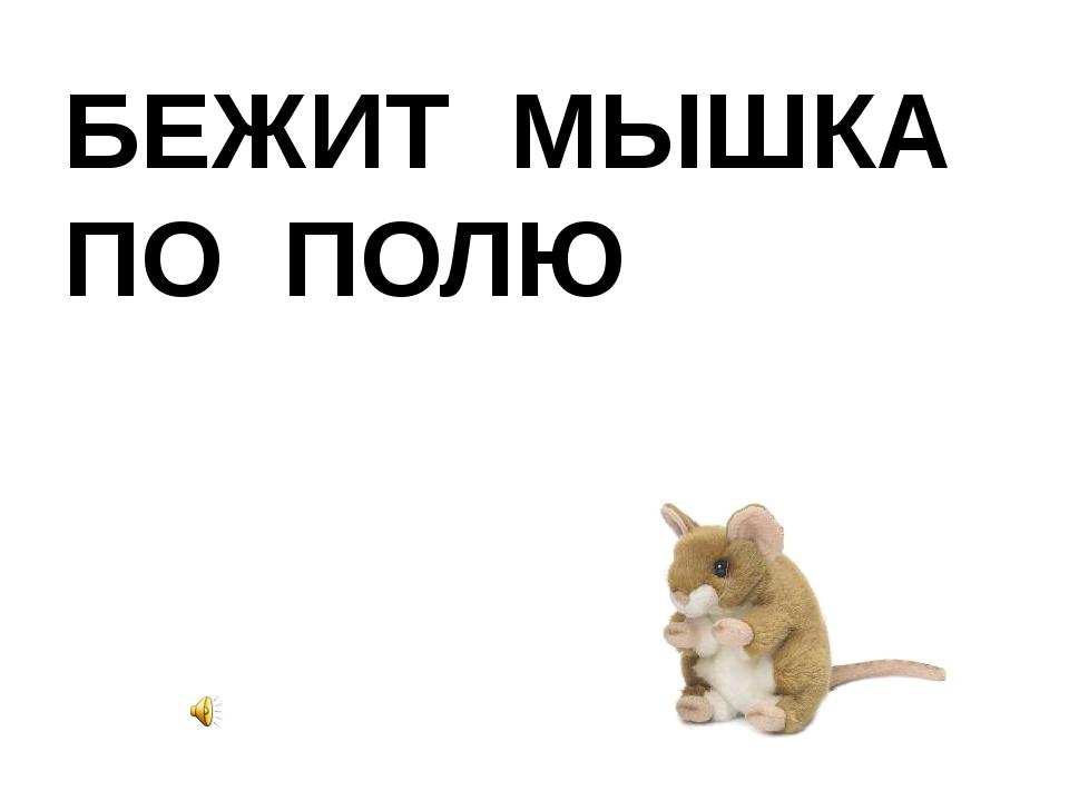 БЕЖИТ МЫШКА ПО ПОЛЮ