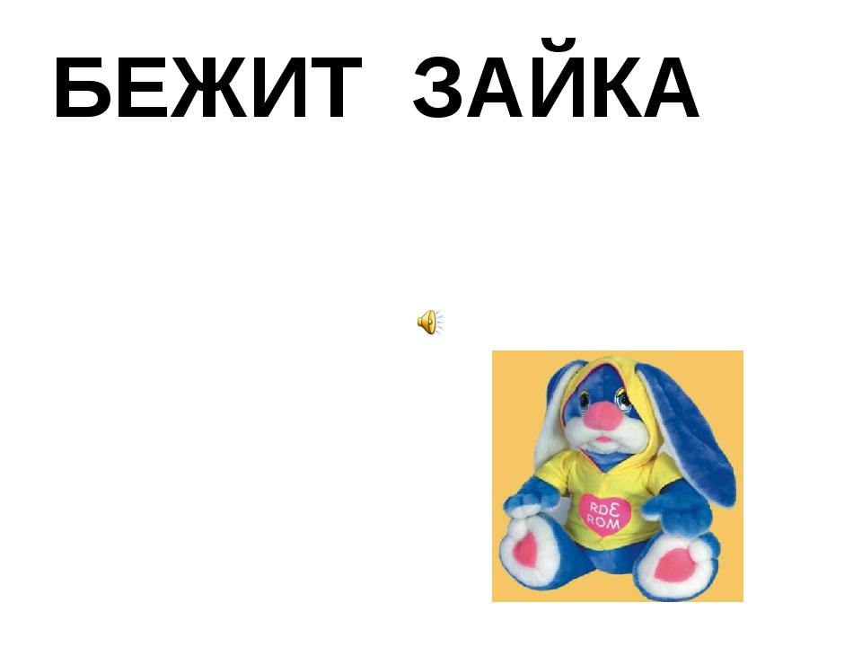 БЕЖИТ ЗАЙКА