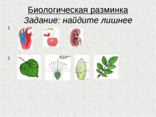 Биологическая разминка Задание: найдите лишнее 1. 2.