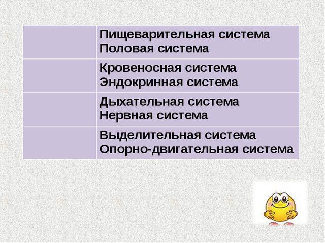 Пищеварительная система Половая система Кровеносная система Эндокринная си...