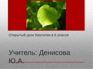 Открытый урок биологии в 6 классе Учитель: Денисова Ю.А.