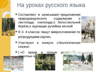 На уроках русского языка Составляют и записывают предложения природоведческог