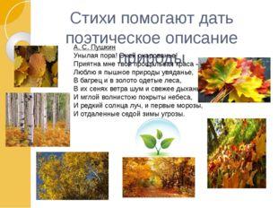 Стихи помогают дать поэтическое описание природы А. С. Пушкин Унылая пора! О