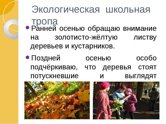 Экологическая школьная тропа Ранней осенью обращаю внимание на золотисто-жёлт...
