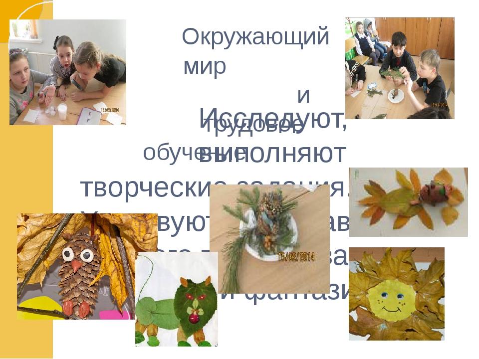 Окружающий мир и трудовое обучение Исследуют, выполняют творческие задания....