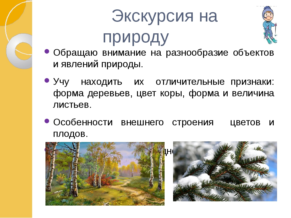 Экскурсия на природу Обращаю внимание на разнообразие объектов и явлений при...