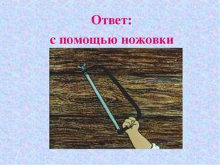 Ответ: с помощью ножовки