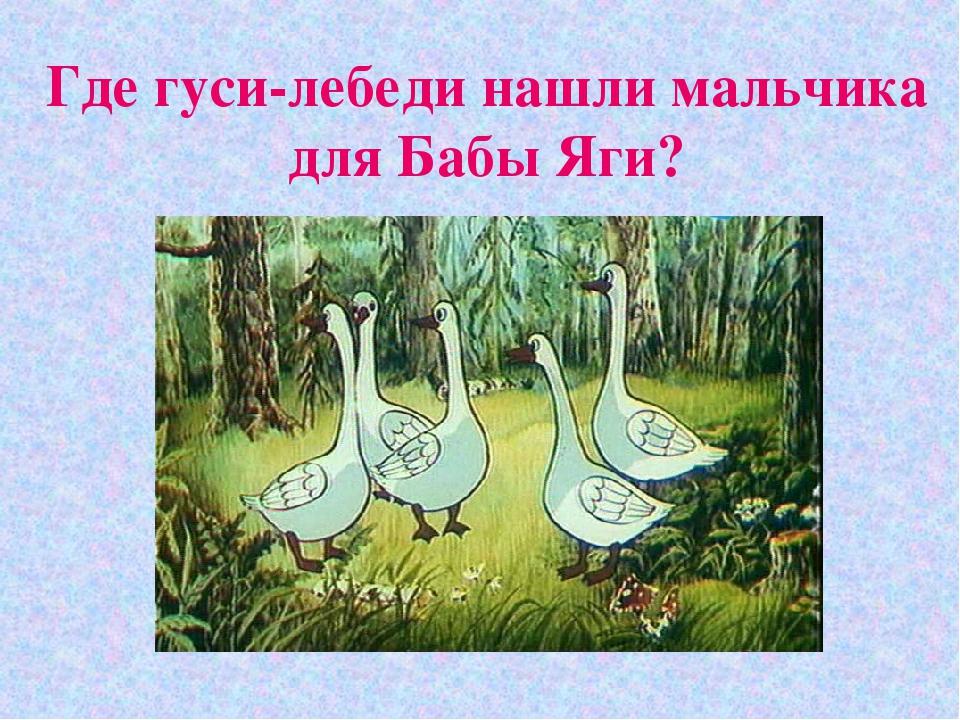 Где гуси-лебеди нашли мальчика для Бабы Яги?