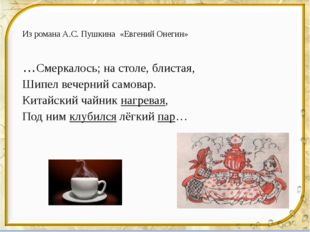 Из романа А.С. Пушкина «Евгений Онегин» …Смеркалось; на столе, блистая, Шипел