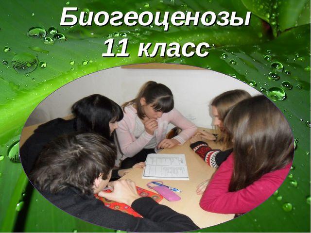Биогеоценозы 11 класс