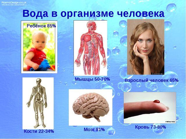 Вода в организме человека