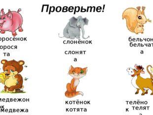 Проверьте! поросёнок слонёнок бельчонок медвежонок котёнок телёнок поросята с