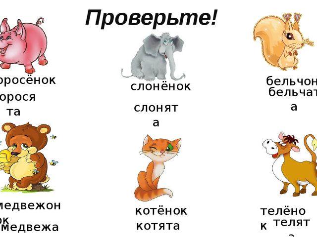 Проверьте! поросёнок слонёнок бельчонок медвежонок котёнок телёнок поросята с...