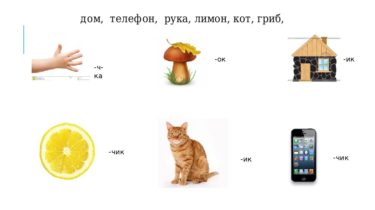 дом, телефон, рука, лимон, кот, гриб, -ч-ка -ок -ик -чик -ик -чик