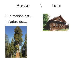 Basse \ haut La maison est… L'arbre est…