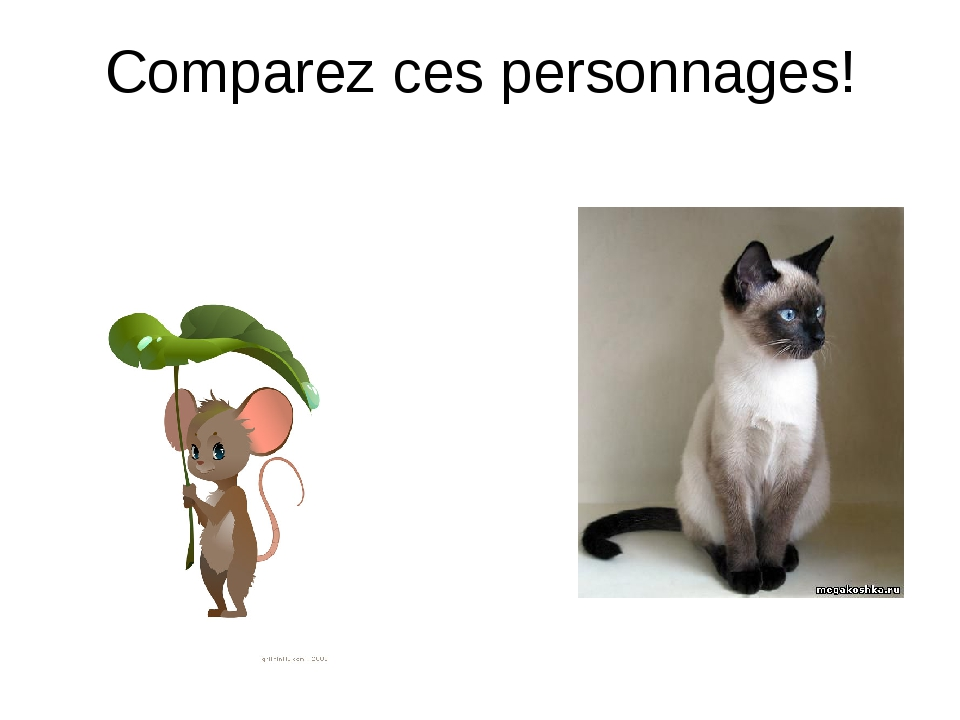 Comparez ces personnages!