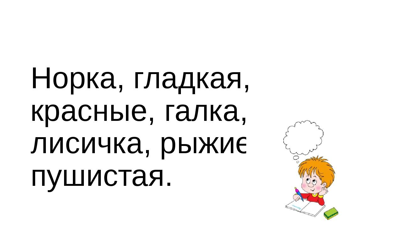 Норка, гладкая, красные, галка, лисичка, рыжие, пушистая.
