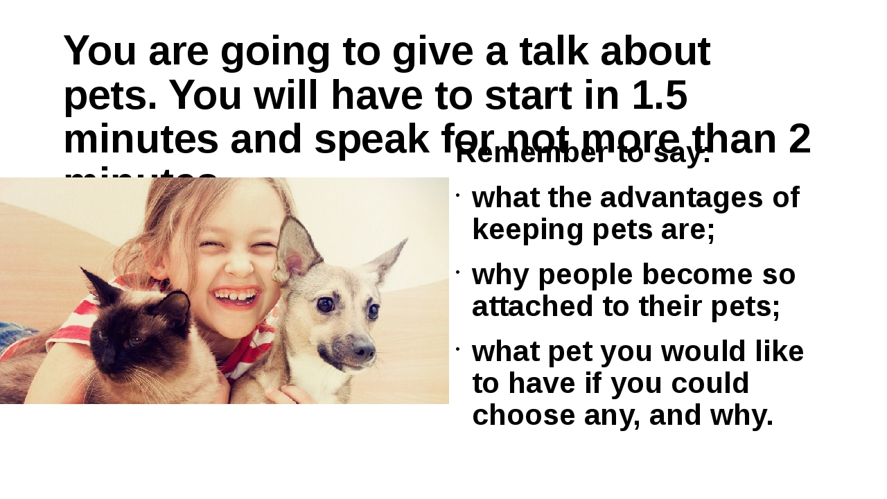 You are going to give a talk about pets. You will have to start in 1.5 minute...