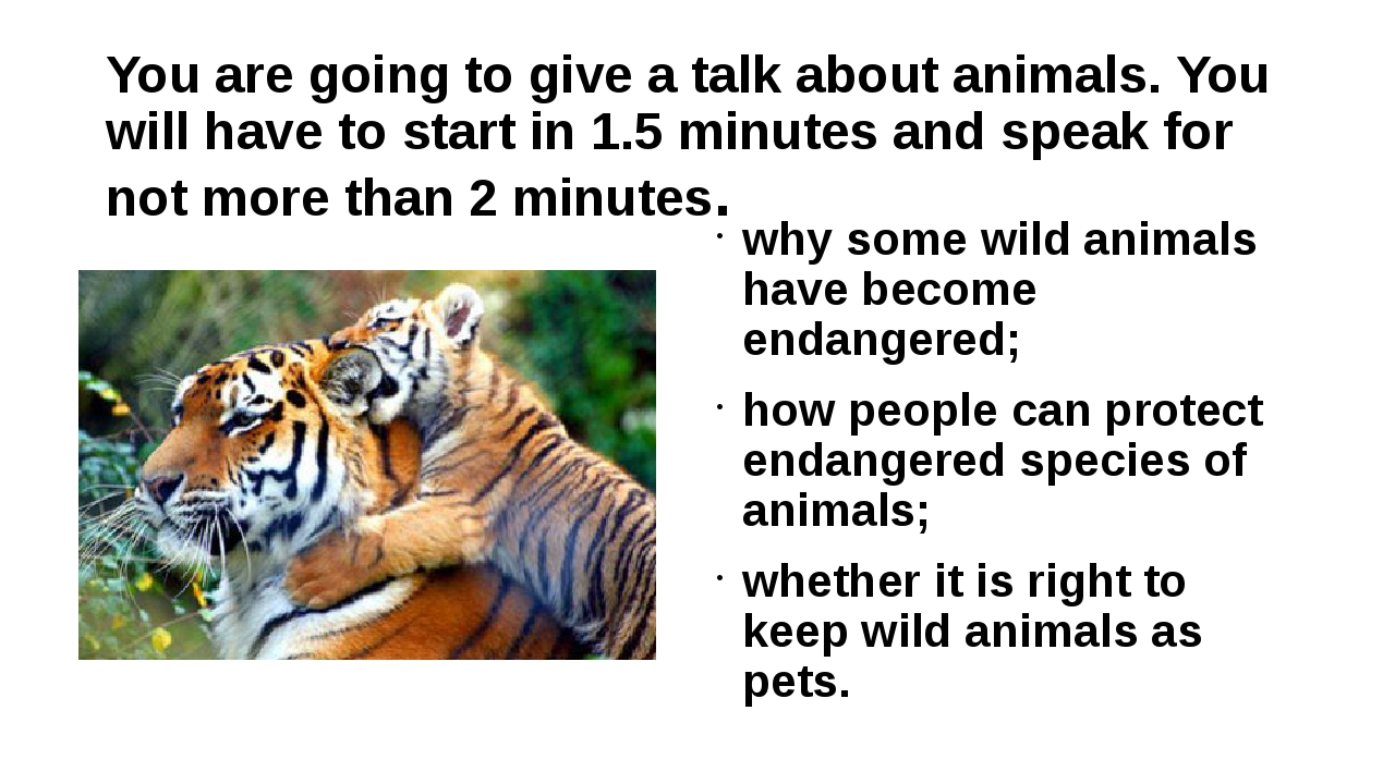 You are going to give a talk about animals. You will have to start in 1.5 min...