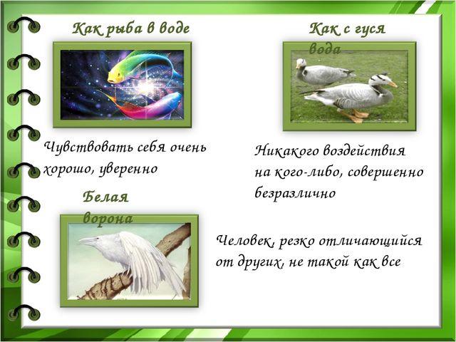 Белая ворона Как с гуся вода Как рыба в воде Чувствовать себя очень хорошо...