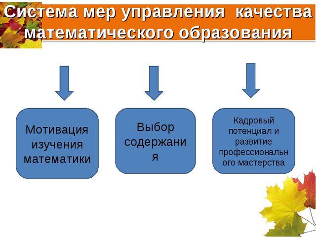 Система мер управления качества математического образования Мотивация изучени...
