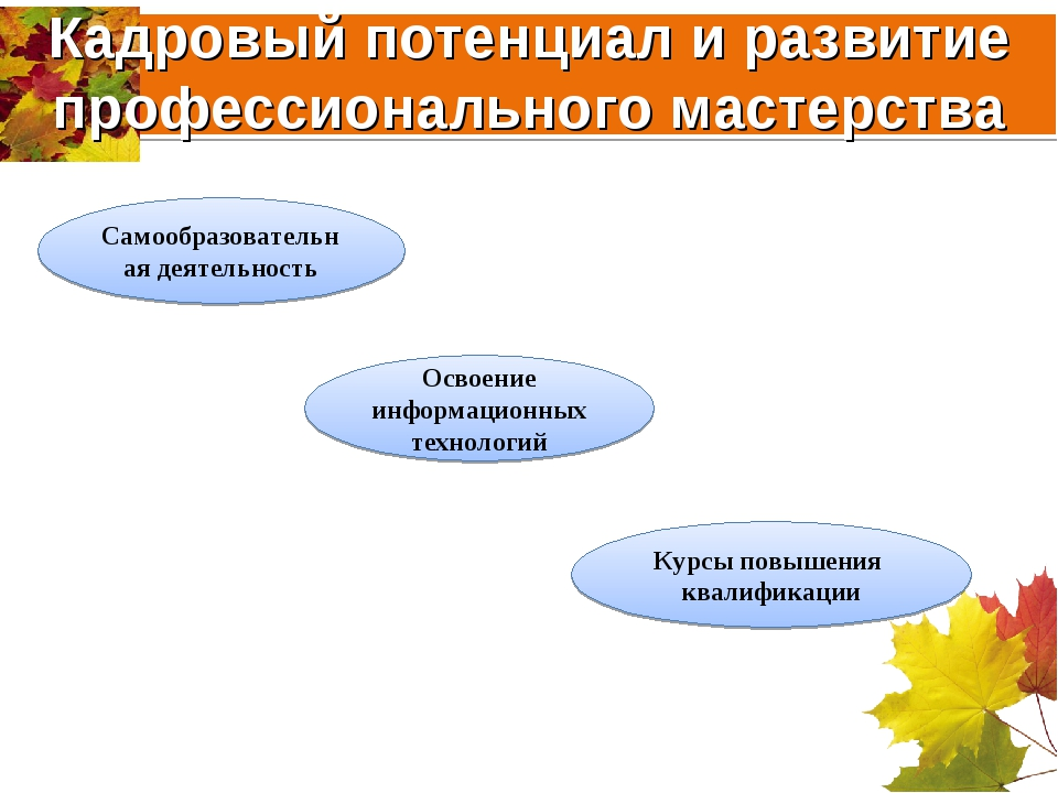 Кадровый потенциал и развитие профессионального мастерства Самообразовательна...