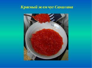 Красный жемчуг Сахалина